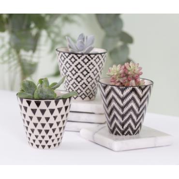 Set of 3 Mini planter